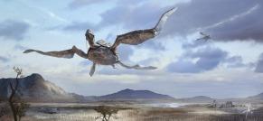 640x295_16502_Turtle_shuttle_2d_landscape_concept_art_sky_hills_turtles_fantasy_flying_creatures_picture_image_digi